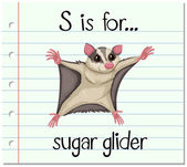 Flashcard letter S is for sugar glider