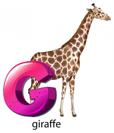 A letter G for giraffe