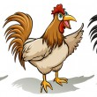 Group of roosters on a white background...