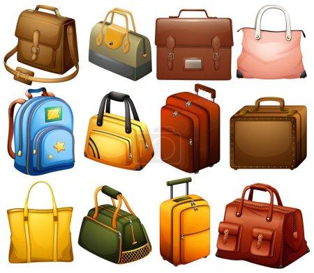 Illustration pour Collection de différents sacs sur fond blanc - image libre de droit