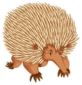 A borwn porcupine on white backbround