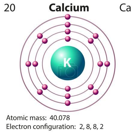 Diagram representation of the element clacium