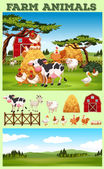 Farm theme with animals and field illustration