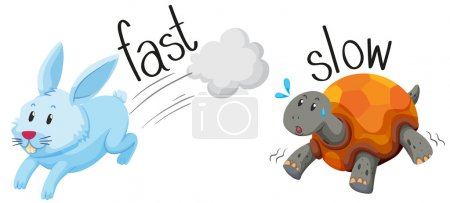 Rabbit runs fast and turtle runs slow