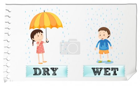 Opposite adjectives dry and wet