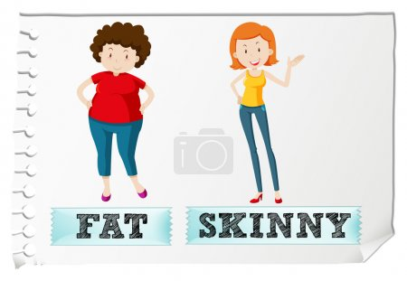 Opposite adjectives fat and skinny