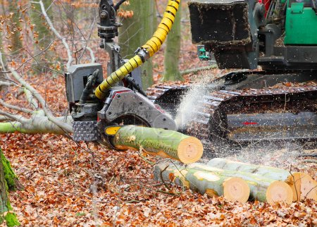 Photo pour La moissonneuse travaillant dans une forêt. Closeup avec faible profondeur DDL. - image libre de droit