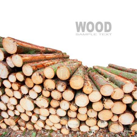 Photo pour Pile de bois de chauffage avec de l'espace pour votre texte . - image libre de droit