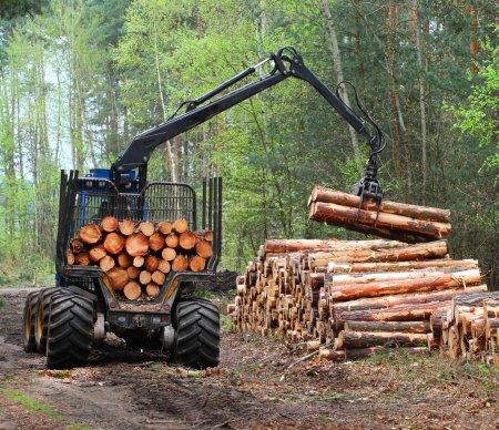 Photo pour La moissonneuse travaillant dans une forêt, vue de jour - image libre de droit