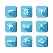 Set with icons - animals and insects of bogs lakes rivers Vector