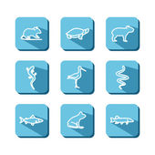 Set with icons - animals of bogs and reservoirs A vector
