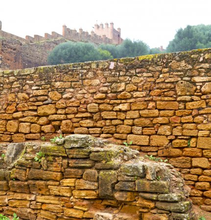 chellah  in morocco africa the old roman deteriorated monument a