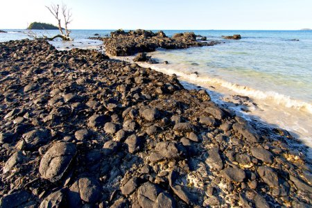 madagascar andilana beach seaweed