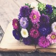Bunch of autumn asters upon open book, vintage eff...