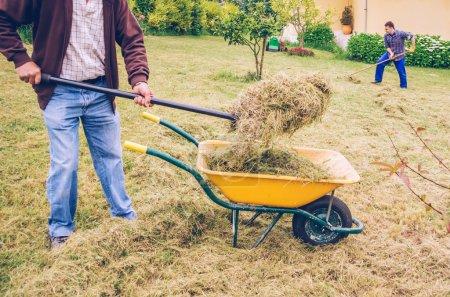 Men working hard raking dry hay on field