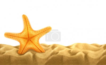 Summer background, starfish in the sand, vector illustration