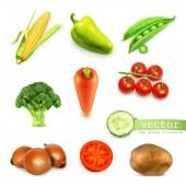 Set of vegetables vector illustration
