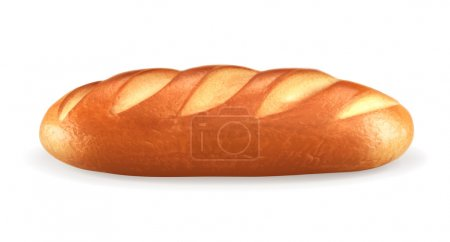 Loaf, vector illustration