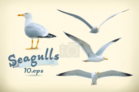 Illustration for Set with seagulls illustration icons - Royalty Free Image