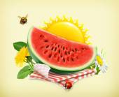 Summer, time for a picnic with  watermelon on tablecloth