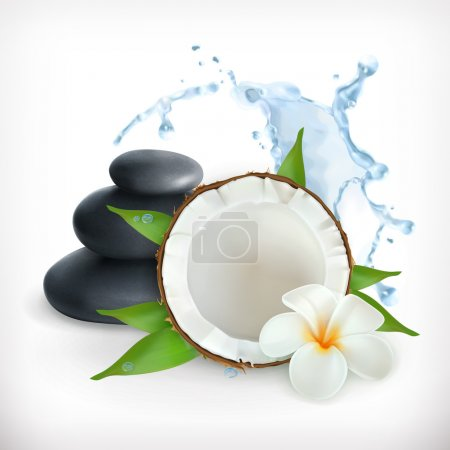 Coconut with stones for spa