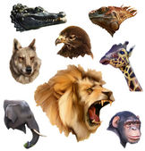 Animal heads low poly style icons set