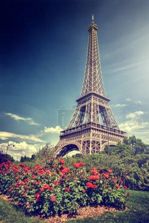 Summer in Paris. Eiffel tower