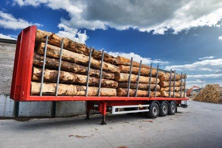 Photo pour Camions chargés de bûches de bois en attente de livraison. Concept industriel - image libre de droit