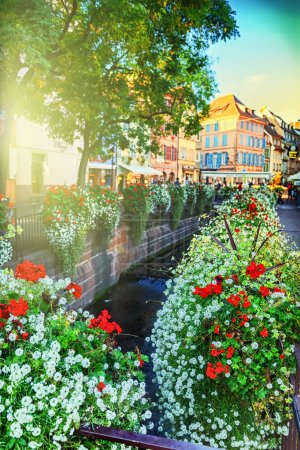 Cityscape of Colmar at summer day