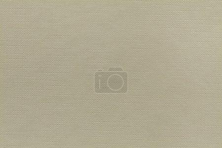 Beige stamped cardboard texture