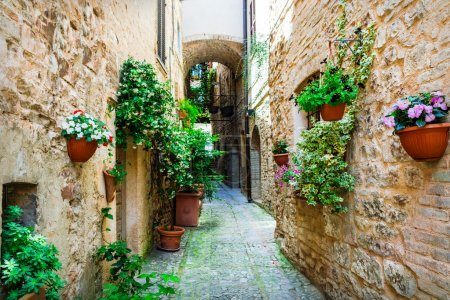 beautiful village Spello (Umbria, Italy) with floral streets