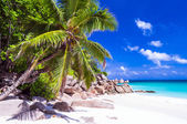 Tropical holidays in white sandy beaches of Seychelles, Praslin