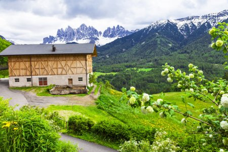 Alpine scenery - farmhouses in  Dolomites