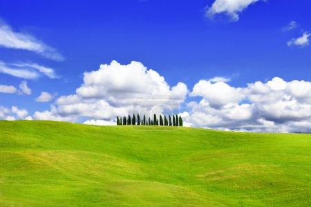Paisajes naturales- verdes colinas de vall d 'Orcia, Toscana, Italia
