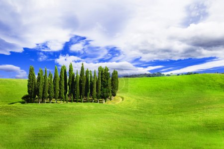 Minimalism in nature - green hills of vall d'Orcia, Tuscany, Italy