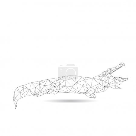 Abstract crocodile isolated on a white backgrounds