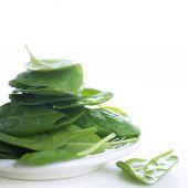 čerstvý zelený špenát