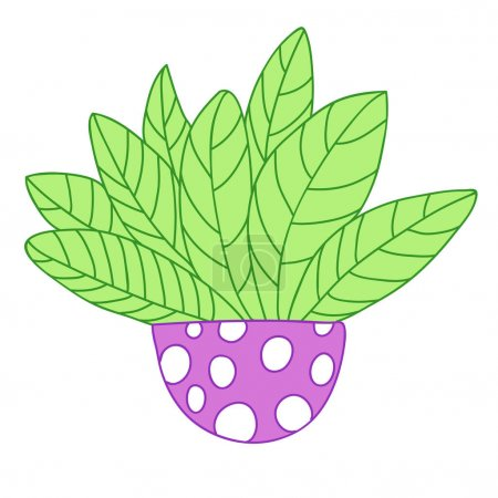 Photo for Cartoon colored plant with big leaves. Circle violet pot with cute white circles or dots. Vector illustration isolated on white background. - Royalty Free Image