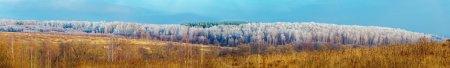 Foto de Amplio Panorama de la escarcha sobre árboles - Imagen libre de derechos