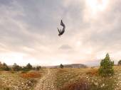 man falling in kars woods