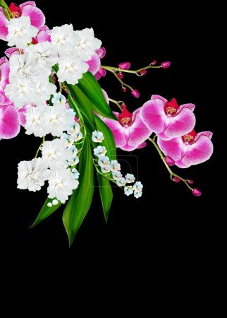 Flowers orchids and lilies of the valley isolated on a black bac