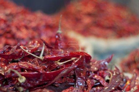 Photo pour Gros plan sur les piments rouges séchés - image libre de droit