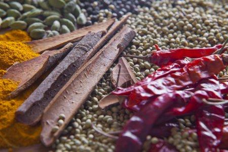 Photo pour Plein écran des diverses épices, gros plan - image libre de droit