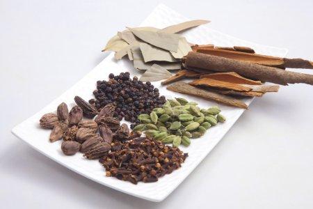 Photo pour Diverses épices disposées sur une assiette - image libre de droit