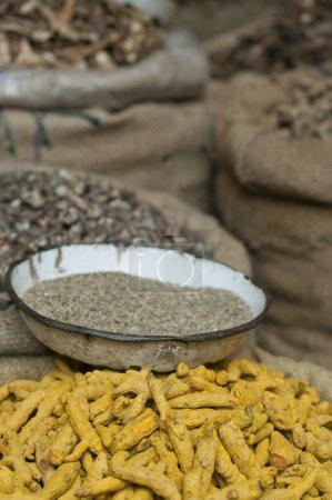 Photo pour Racines de curcuma pour la vente au marché - image libre de droit