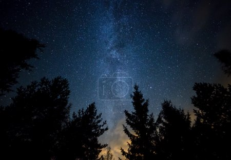 Photo pour Ciel nocturne avec la Voie lactée au-dessus de la forêt et des arbres. La dernière lumière du soleil couchant sur le bas de l'image . - image libre de droit