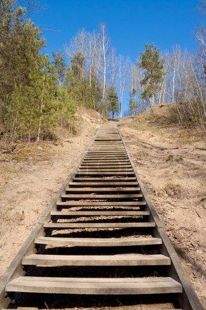 Photo pour Escaliers en bois dans le parc Kalnai (parc des collines) menant à la colline des Trois Croix à Vilnius, Luthuania - image libre de droit