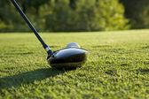 Nízký úhel pohledu Golf ovladače připraven zasáhnout člen určitý genitálie balancovat