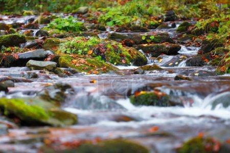 Photo pour Eau bleue de ruisseau de montagne en automne. Fond de nature. - image libre de droit