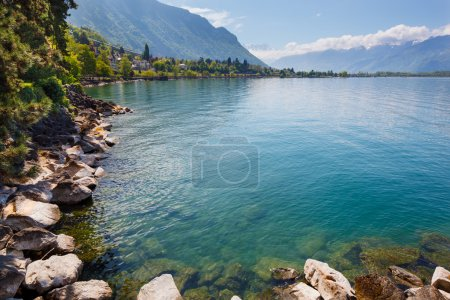 Landscape. Shore of the lake and snow capped mountains on a sunny day